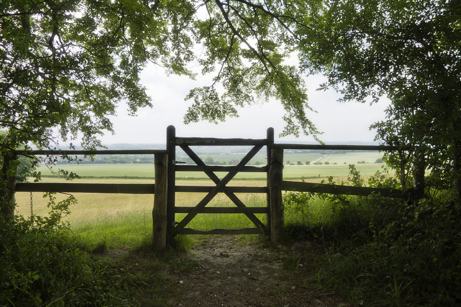 2011-06-03 16 Hollingbourne - Charing Hill (edit)