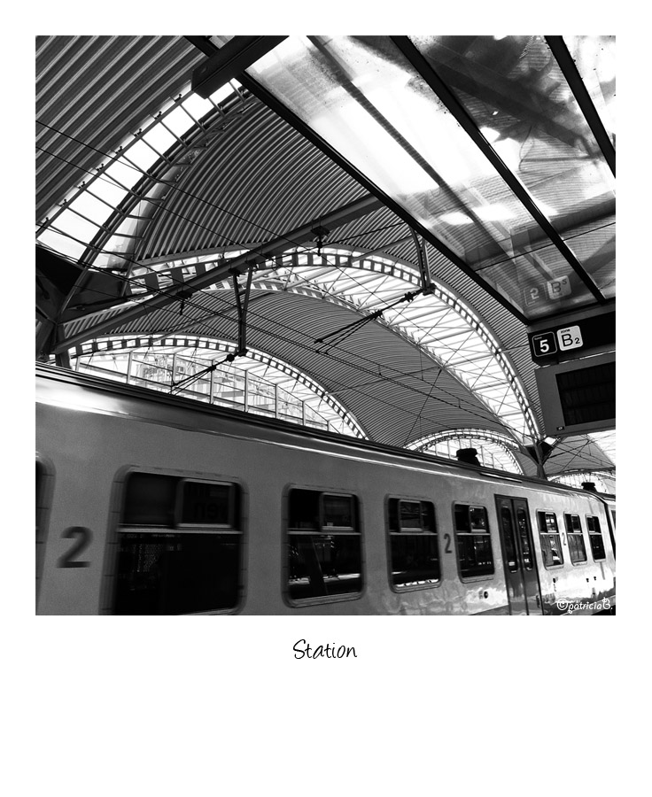 Klein 2011-06-27 Leuven 027 Station (edit7)