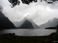 New Zealand - P1010913 Milford Sound, Mitre's Peak (van wal) (edit)