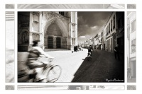 2011-08-01-105-Mechelen-Sint-Romboutskathedraal-edit