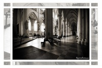 2011-08-01-108-Mechelen-Sint-Romboutskathedraal-edit
