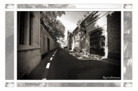 2011-08-01-219-Mechelen-Schoutetstraat-edit