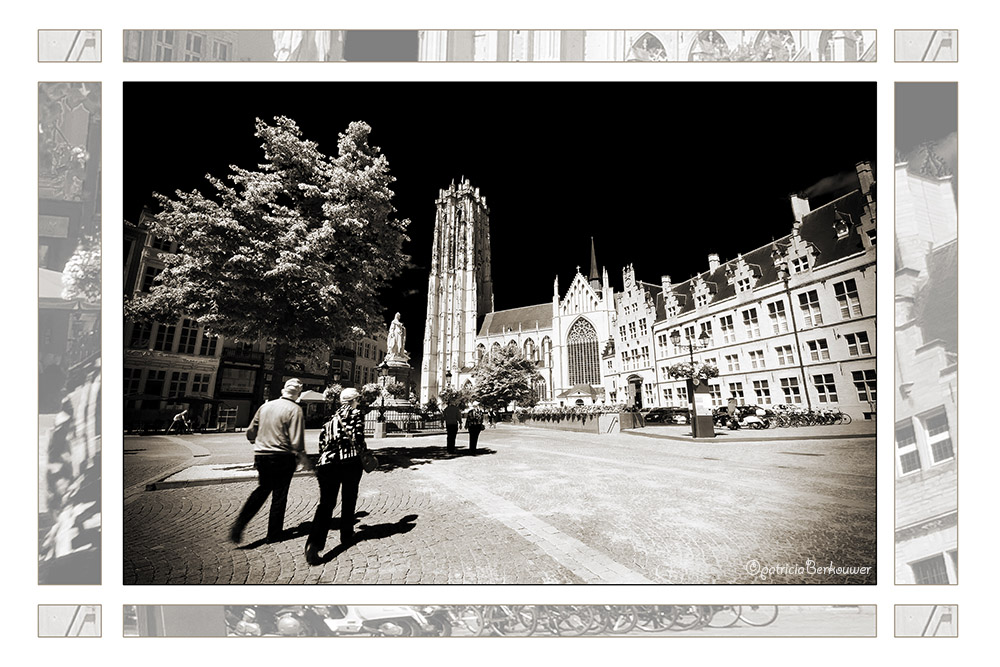 2011-08-01 092 Mechelen - Sint-Romboutskathedraal (edit)